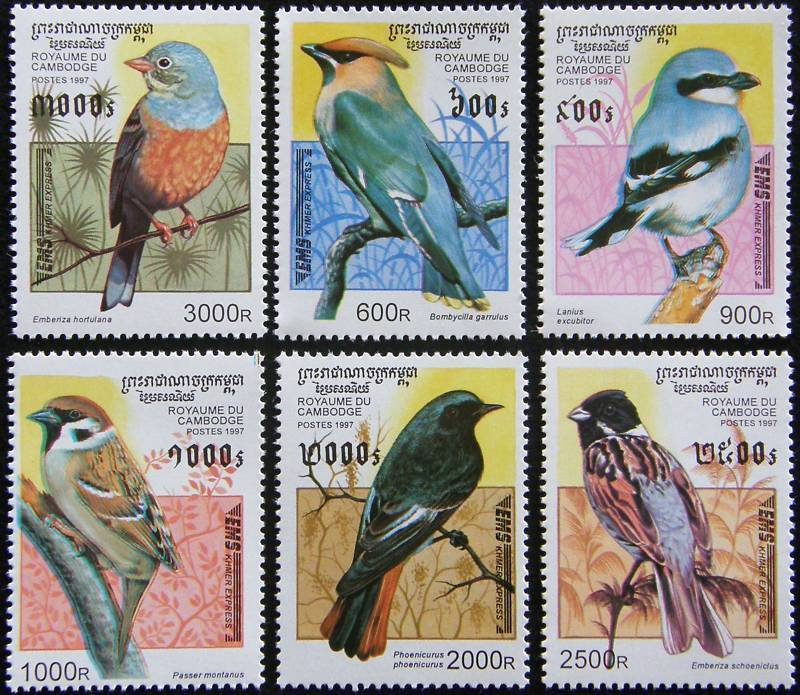 Cambodia 1997 Stamps Set Birds Sparrows