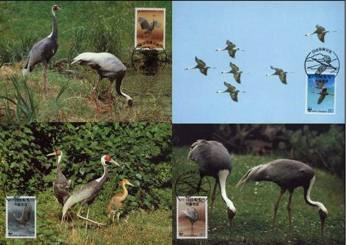 WWF Korea 1988 Maxi Cards White Naped Cranes