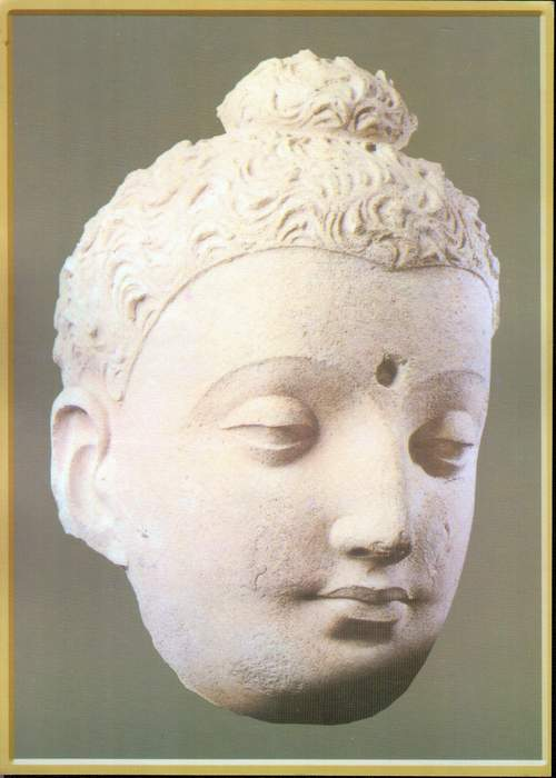 Pakistan Postcard Head Of Buddha Taxila Musuem