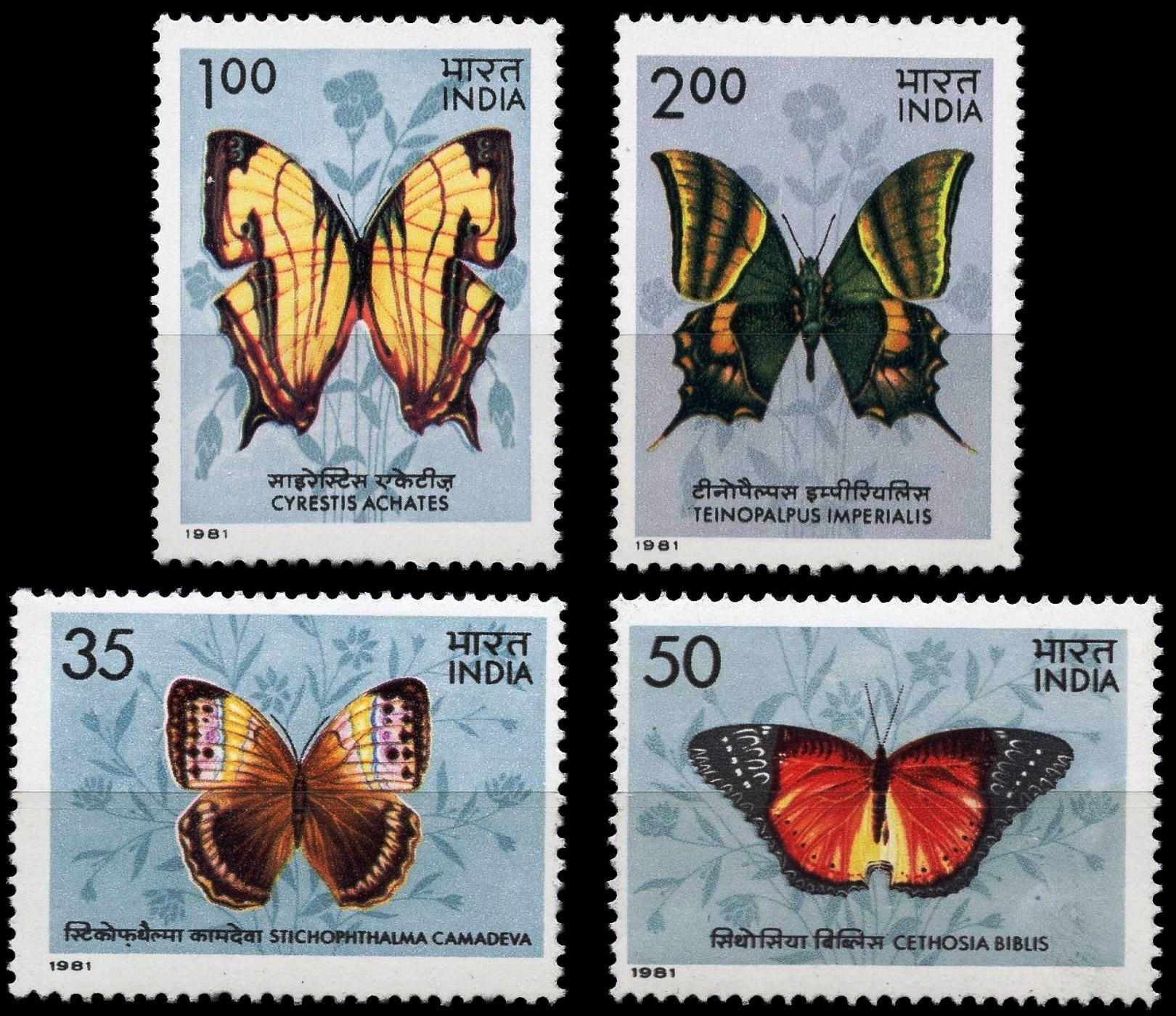 India 1981 Fdc Stamps Butterflies