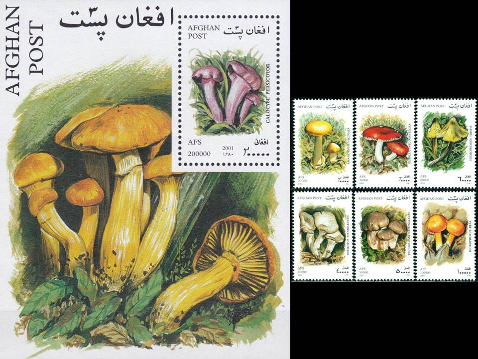 Afghanistan 2001 S/Sheet & Stamps Mushrooms