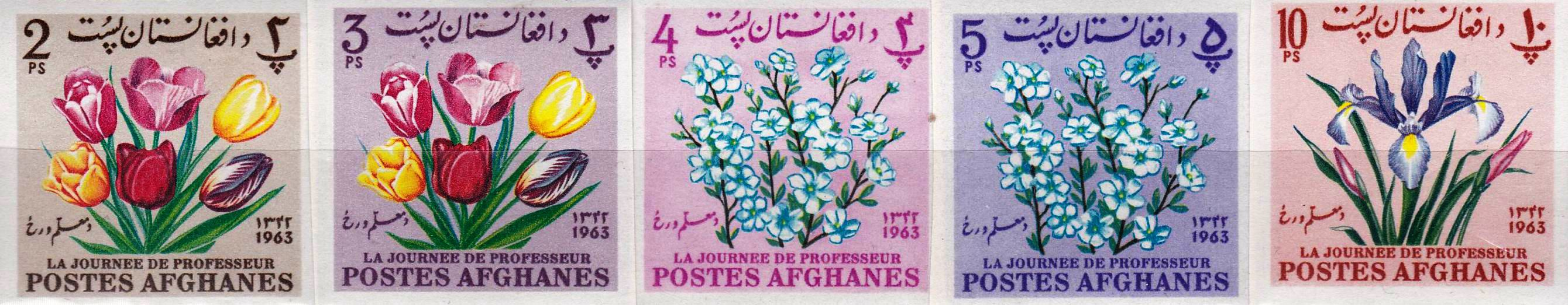 Afghanistan 1964 Stamps Teachers Day Flowers