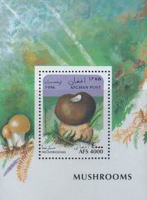 Afghanistan 1996 S/Sheet Mushrooms
