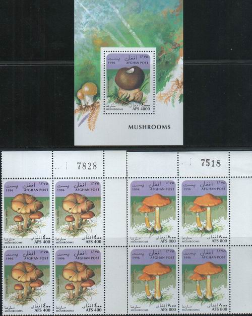 Afghanistan 1996 S/Sheet & Stamps Mushrooms