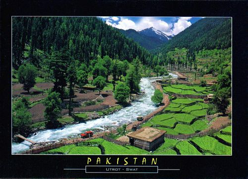 Pakistan Beautiful Postcard Atror Valley