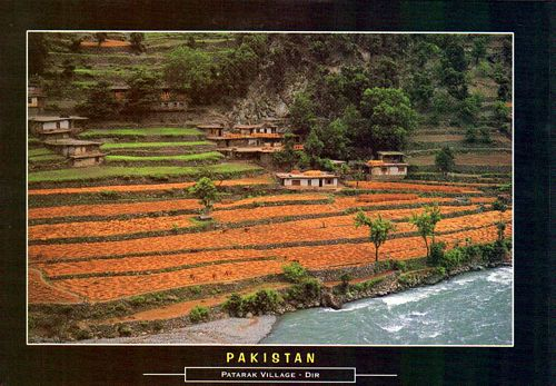 Pakistan Beautiful Postcard Patarak Village Dir