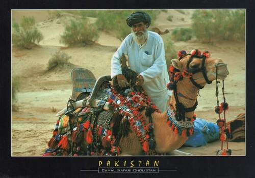 Pakistan Beautiful Postcard Cholistan Desert