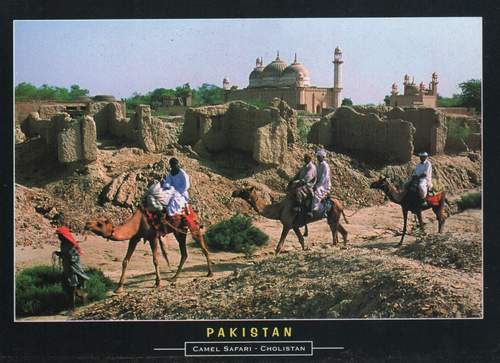 Pakistan Beautiful Postcard Cholistan Desert .