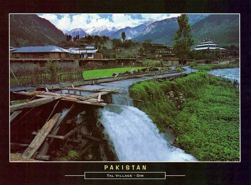 Pakistan Beautiful Postcard Tal Village Dir