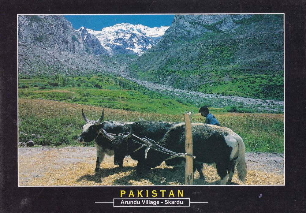 Pakistan Beautiful Postcard Arundu Village Skardu