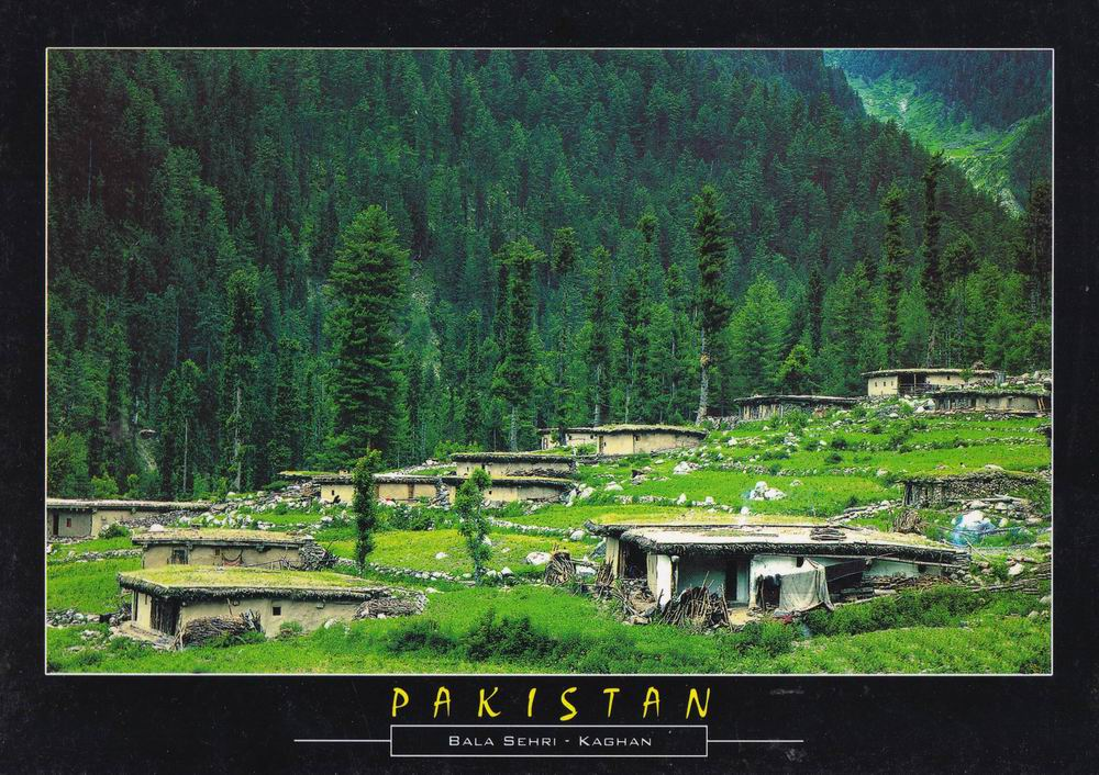 Pakistan Beautiful Postcard Bala Sehri Kaghan Valley
