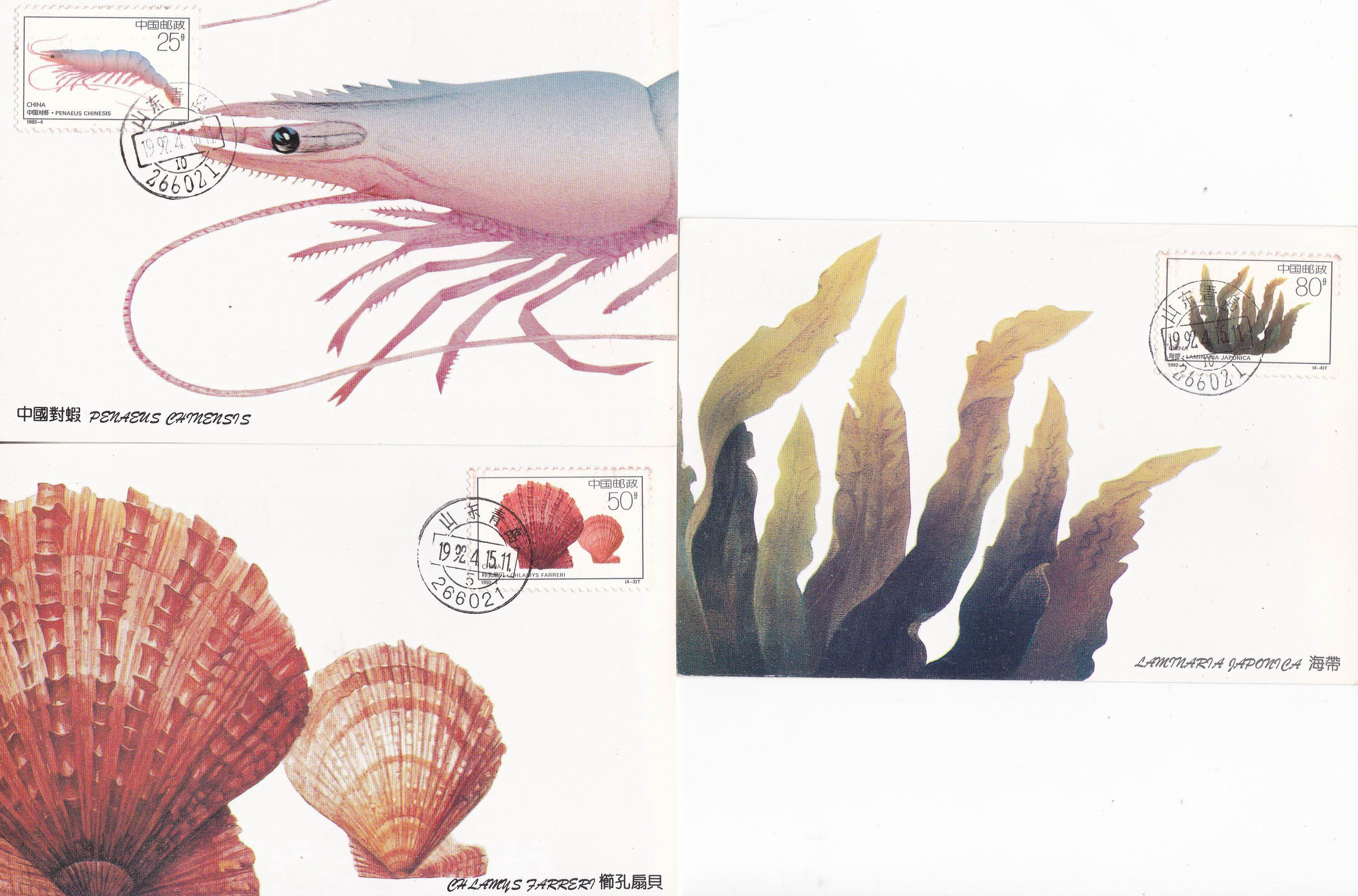China 1992 Maxi Cards Marine Life Shrimp