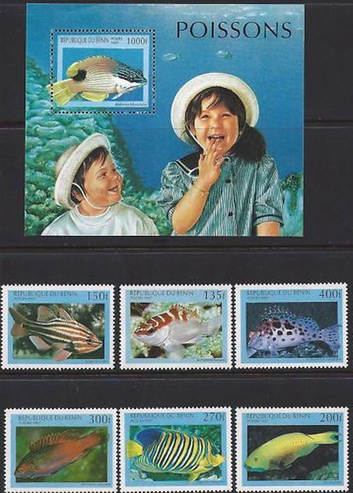 Benin 1997 S/Sheet & Stamps Marine Life Fishes MNH