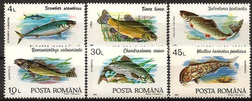 Romania 1997 Stamps Marine Life Fishes