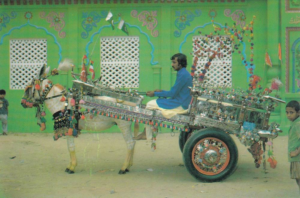 Pakistan Beautiful Postcard Donkey Cart
