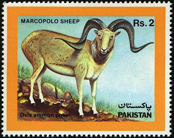 Pakistan Stamps 1986 Marcopolo Sheep