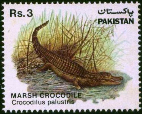 Pakistan Stamps 1983 Wildlife Series Marsh Crocodile