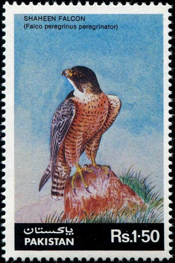 Pakistan Stamps 1986 Shahen Falcon