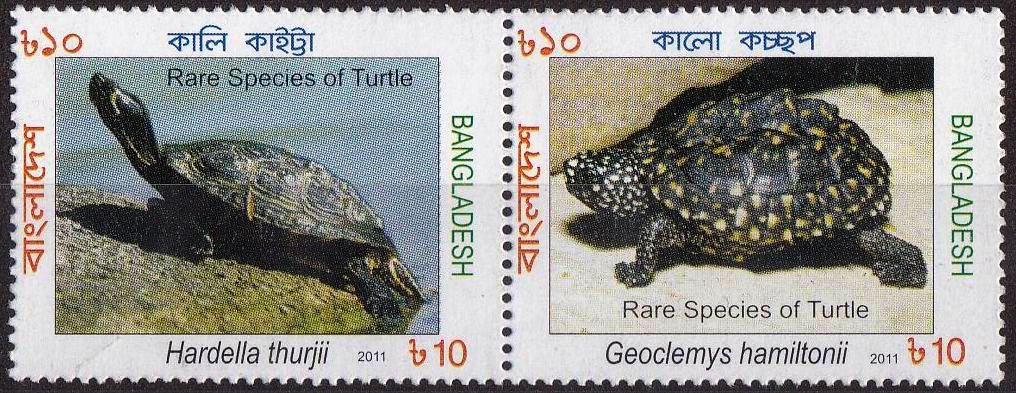 Bangladesh 2011 Stamps Rare Species Of Turtle MNH
