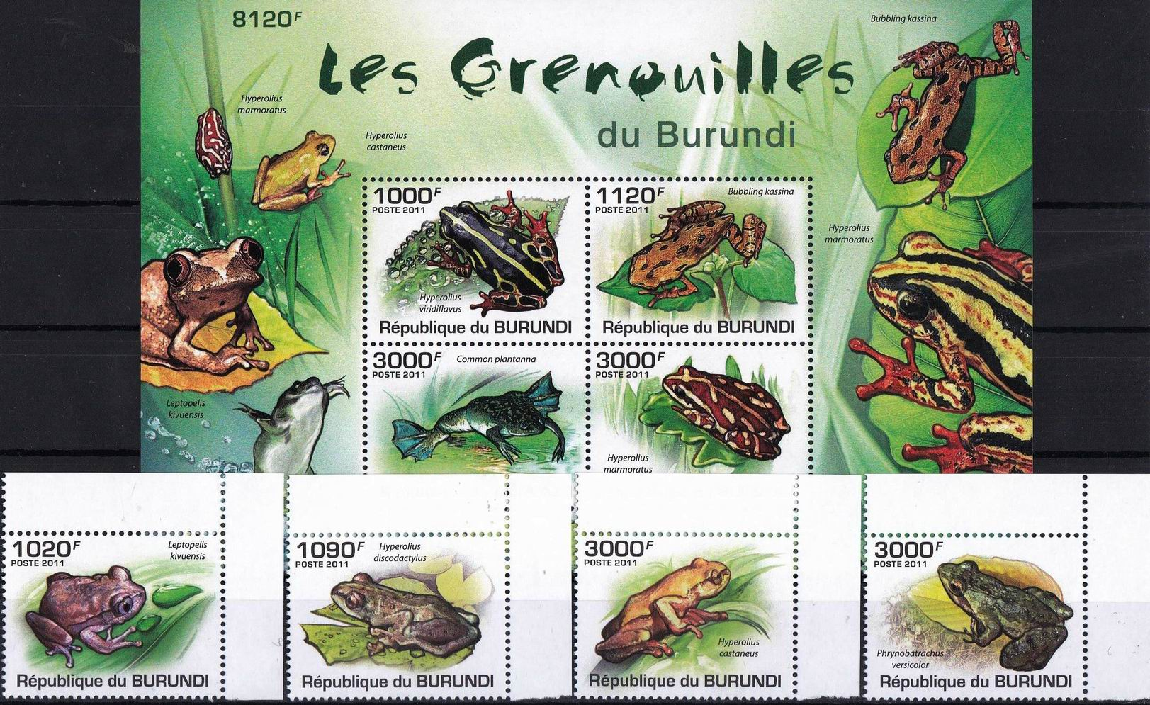 Burundi 2011 S/Sheet & Stamps Frogs