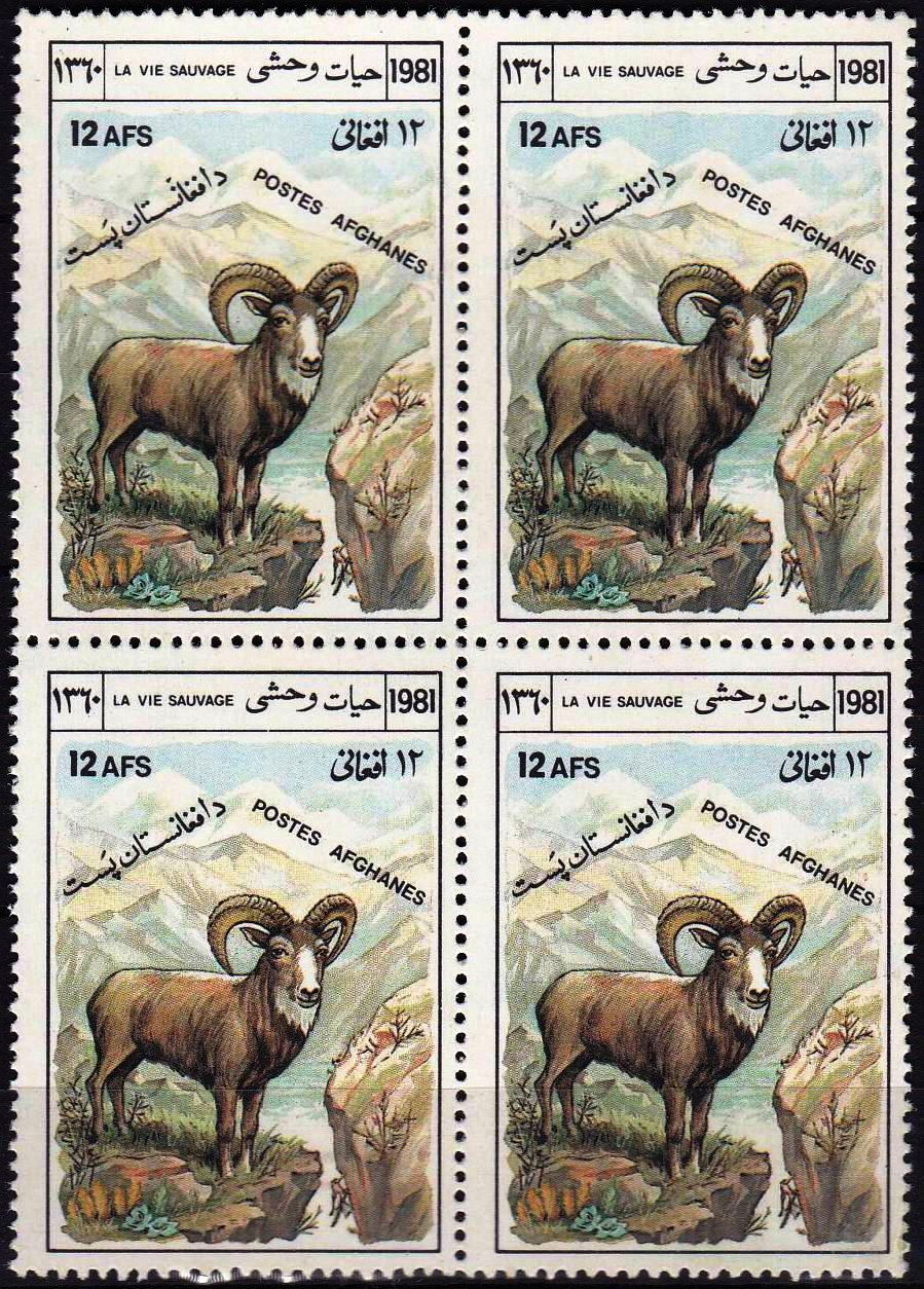 Afghanistan 1981 Stamp Markhor Sheep MNH