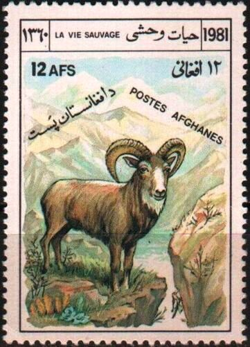 Afghanistan 1981 Stamps Markhor Sheep MNH