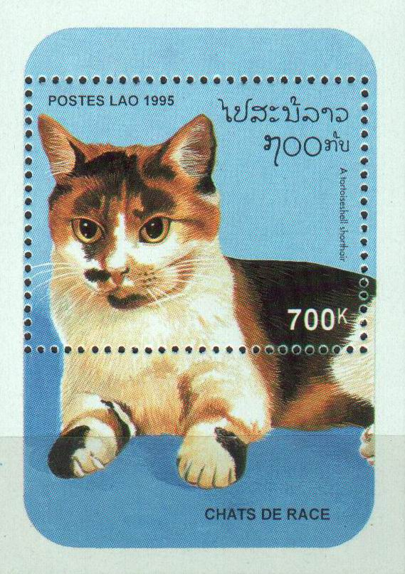 Laos 1995 S/Sheet Domestic Cats MNH