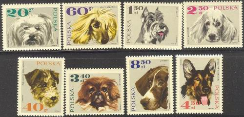 Poland 1969 Stamps Dogs