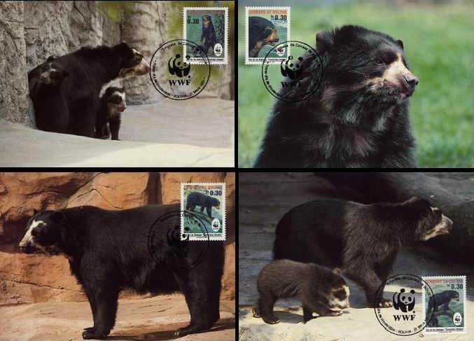 WWF Bolivia 1991 Beautiful Maxi Cards Spectacled Bear