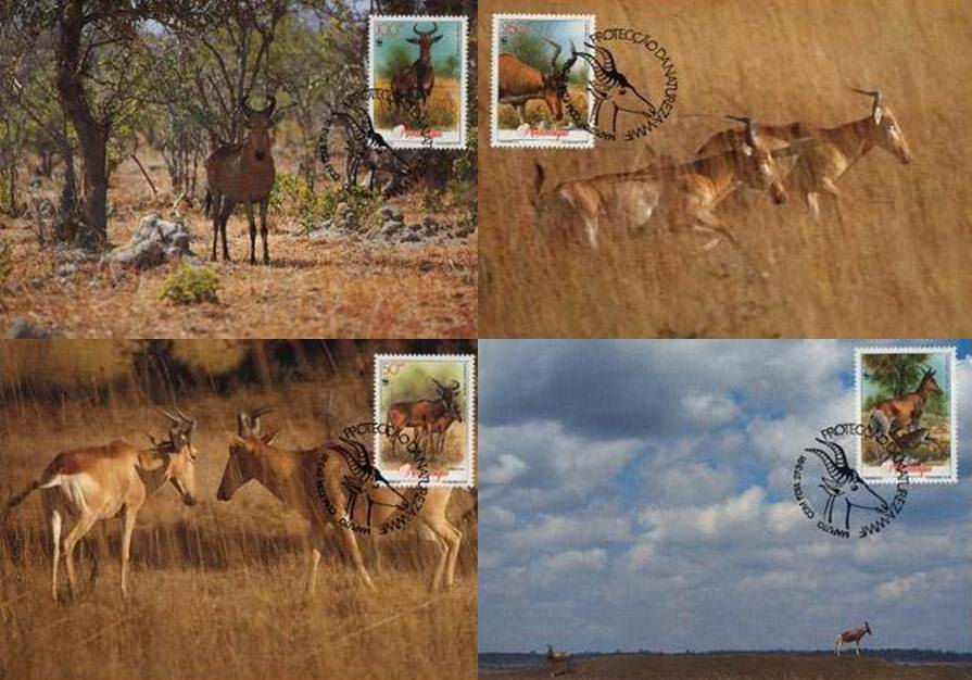 WWF Mozambique 1991 Beautiful Maxi Cards Hartebeest