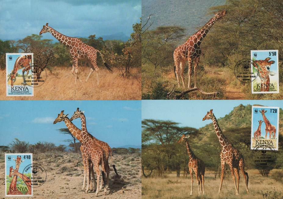 WWF Kenya 1989 Beautiful Maxi Cards Giraffe