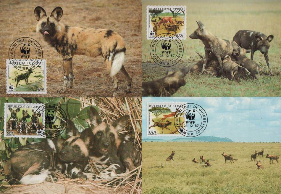 WWF Guinee 1987 Beautiful Maxi Cards African Wild Dogs
