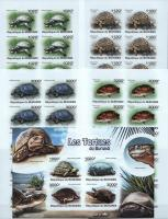 Burundi 2011 S/Sheet & Stamps Imperf Turtles