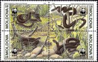 WWF Moldova 1993 Stamps Reptiles Snakes MNH