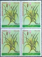 Pakistan Stamps 1999 Medicinal Plant Spogel Seeds/Plantain