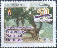 Pakistan Stamps 2004 Sui Southern Gas Company